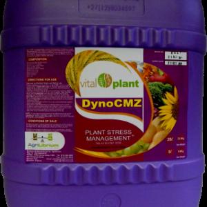DynoCMZ