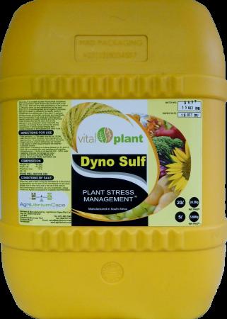 DynoSulf