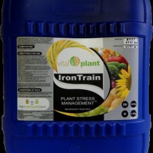 IronTrain