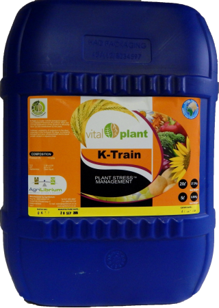 K-Train