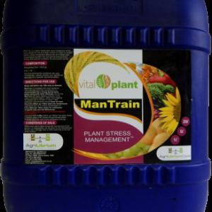 ManTrain