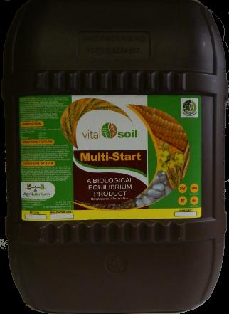Multi-Start